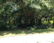 208 Green Lakes Dr., Myrtle Beach image