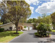 6960 Sable Ridge Ln, Naples image