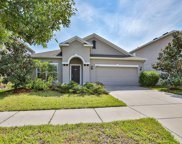 12114 Whistling Wind Drive, Riverview image