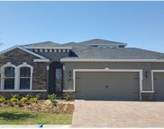 12206 Dusty Miller Place, Riverview image