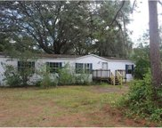 13130 Lincoln Road, Riverview image