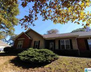 65 Fritz Dr, Pell City image