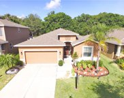 1307 Addison Manor Drive, Ruskin image