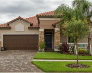 13141 Green Violet Drive, Riverview image