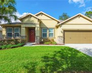 15740 Starling Water Drive, Lithia image