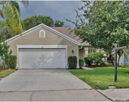 418 Cypress View Drive, Oldsmar image