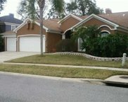 219 Chestnut Ridge Street, Winter Springs image