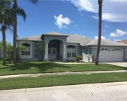 8503 Siamang Court, New Port Richey image