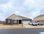 7927 Gristmill Dr, Mccalla image