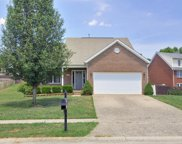 8707 Pitch Pine Way, Louisville image