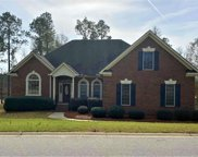 339 Lake Frances Drive, West Columbia image