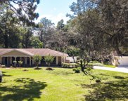 392 ARTHUR MOORE DR, Green Cove Springs image