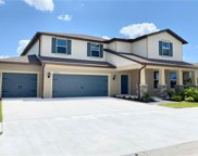 10832 Green Harvest Drive, Riverview image