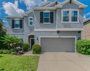12035 Whistling Wind Drive, Riverview image