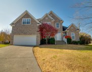 3006 Helfrich Ct, Spring Hill image