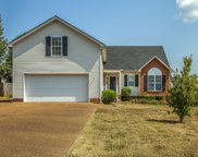 2108 Kenowick Ct, Spring Hill image