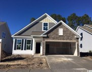 1202 Pyxie Moss Dr., Little River image