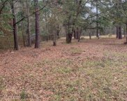 1203 Appaloosa Road Unit #Lot 10-A, Johns Island image