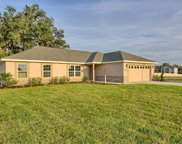9721 Pepper Tree Place, Wildwood image