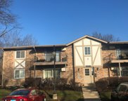 16W575 79Th Street Unit 1A-201, Willowbrook image