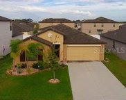 14147 Covert Green Place, Riverview image