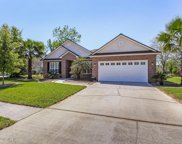 2209 WIDE REACH DR, Orange Park image