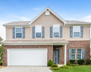 1038 Countess Ln, Spring Hill image