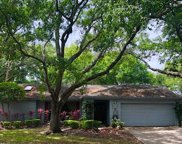 3041 Egret Terrace, Safety Harbor image