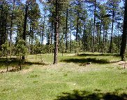 Lot 2 Jack Rabbit Road, Custer image