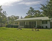 214 SW COPPERHEAD LANE, Fort White image