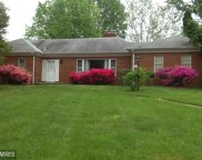 6501 PINECREST COURT, Annandale image
