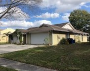 4727 Windflower Circle, Tampa image