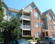 6512 SPRINGWATER COURT Unit #4301, Frederick image