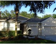 5036 Rishley Run Way Unit 1, Mount Dora image