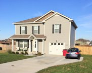 543 Tracy Ln, Clarksville image