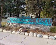 2845 Idlewild Drive Unit 213, Reno image