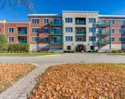 111 North Larch Avenue Unit 307, Elmhurst image