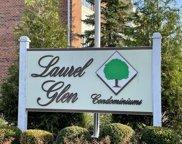 13098 Laurel Glen Court Unit #101, Palos Heights image