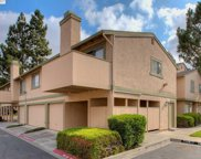 46914 Lundy Ter, Fremont image