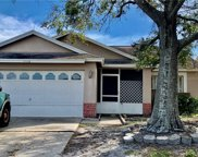 4612 Cheyenne Point Trail, Kissimmee image