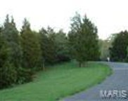 2166 Meadow Forest  Drive, Wildwood image