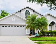 10143 Heather Sound Drive, Tampa image