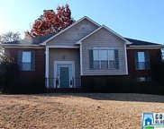209 Lane Park Cir, Alabaster image
