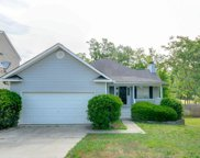 131 Stoney Pointe Drive, Chapin image