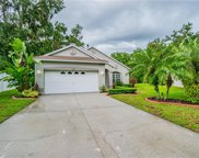 15934 Stags Leap Drive, Lutz image