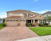 7605 Lake Albert Drive, Windermere image