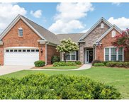 12118  Cougar Point Court, Indian Land image