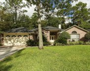 8650 HEATHER RUN DR South, Jacksonville image