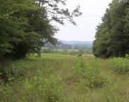 42.98 Acre Mars Hill Road, Spring City image