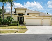 2409 Emerald Rose Way, Apopka image